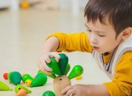 giocattoli in legno plantoys